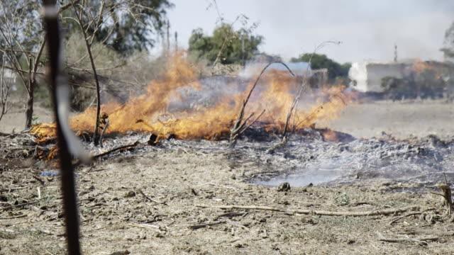 Burning brush fire slow motion