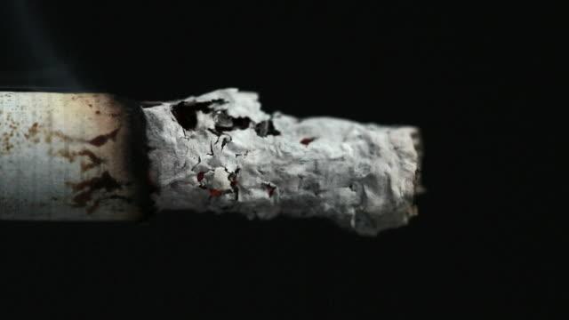 burning cigarette butt - zigarettenstummel stock-videos und b-roll-filmmaterial