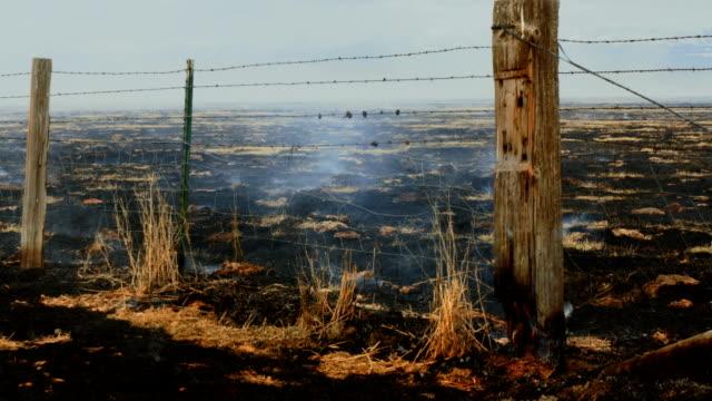 stockvideo's en b-roll-footage met burning field - houten paal