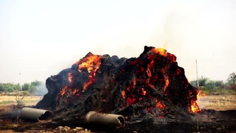 vídeos y material grabado en eventos de stock de fuego ardiente al aire libre durante la temporada de verano - quemado