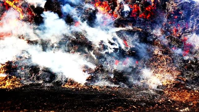 brennendes feuer im freien während der sommersaison - brennbar stock-videos und b-roll-filmmaterial