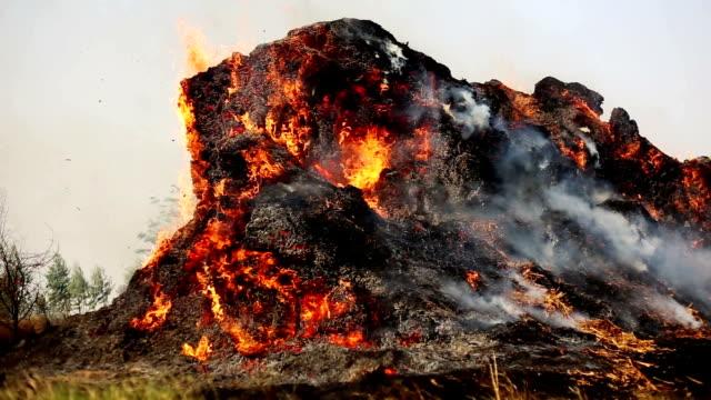 薪の暖炉 - 可燃性点の映像素材/bロール