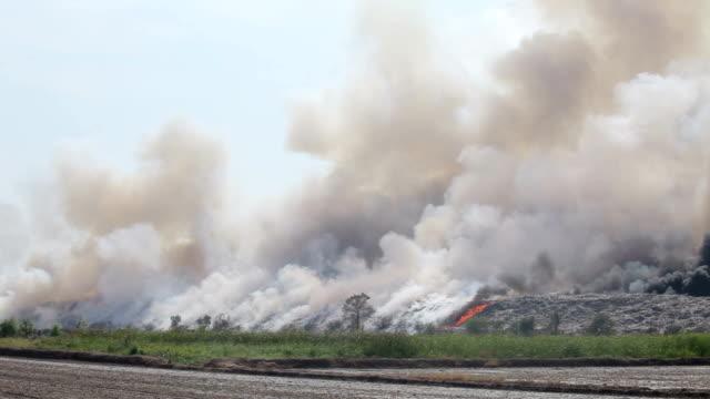 Verbrennung von Abfall mit Haufen von Rauch aus einem brennenden Haufen Müll