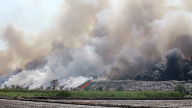 vidéos et rushes de brûler des ordures amas de fumée de brûler des tas de déchets - crimes et délits