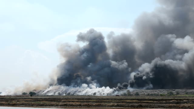 burning garbage heap of smoke - natural disaster stock videos & royalty-free footage