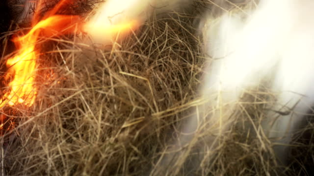 burning hay in campfire with a lot of smoke - hay texture stock videos & royalty-free footage