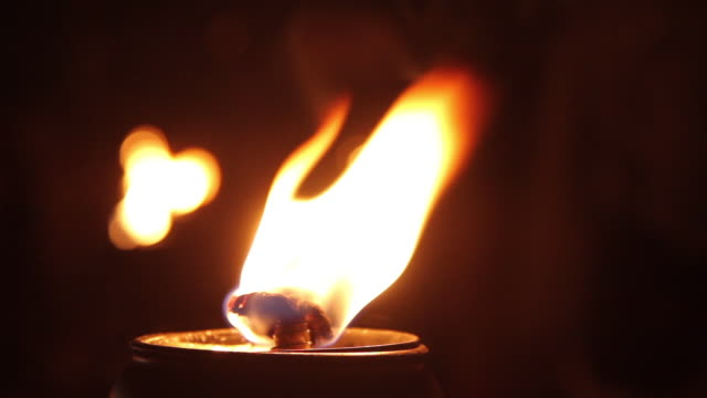 "burning lamp, thailand - ""bbc natural history"" video stock e b–roll"
