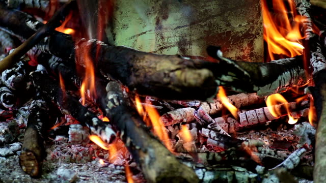 Burning Logs and Glowing Embers