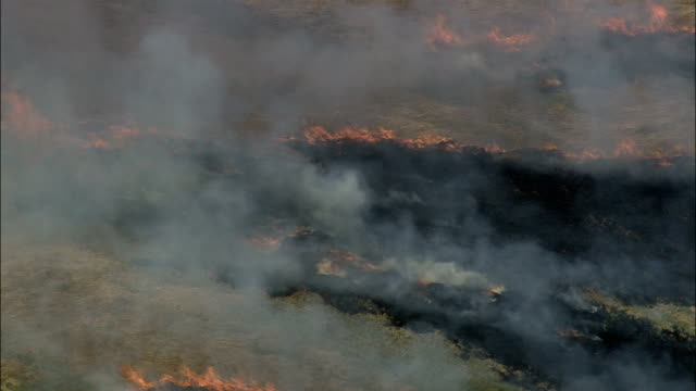 Burning Stubble Near Damsholte  - Aerial View - Zealand, Vordingborg Kommune, Denmark