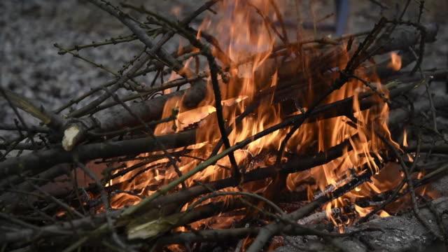 brennende baumäste im freien - strauch stock-videos und b-roll-filmmaterial