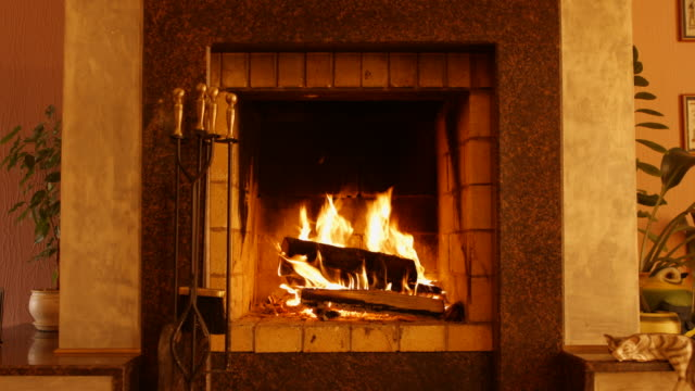 burning wood in the fireplace. fireplace in the interior of the house - fireplace stock videos and b-roll footage