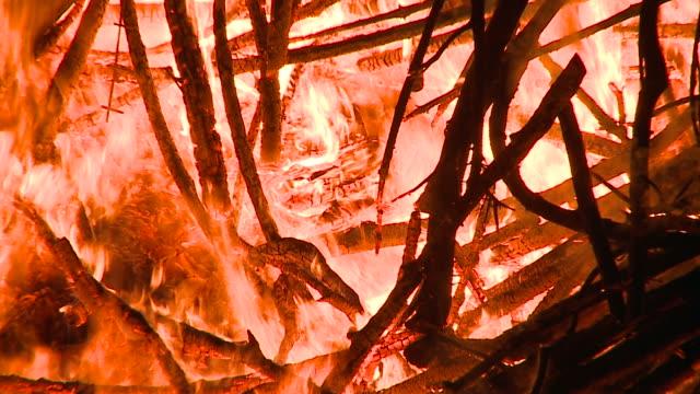 HD: Burning wood