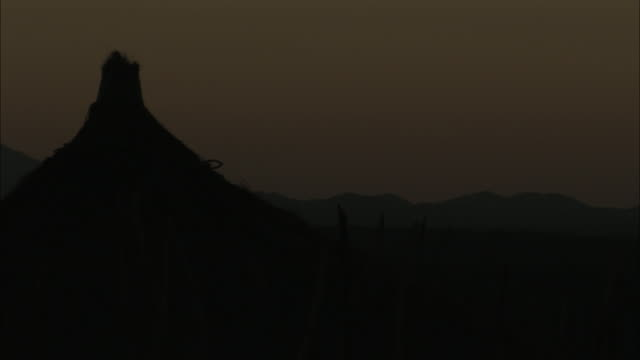 a burnished sky silhouettes the thatched roof of a hut. - thatched roof stock videos & royalty-free footage