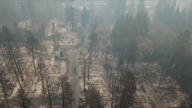 burnt down residential area after a wildfire - abgerissen stock-videos und b-roll-filmmaterial