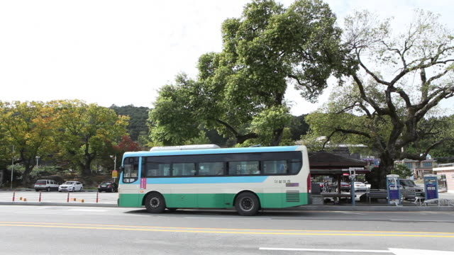 a bus arriving at a bus stop in nonsan, chungcheongnam-do - bushaltestelle stock-videos und b-roll-filmmaterial
