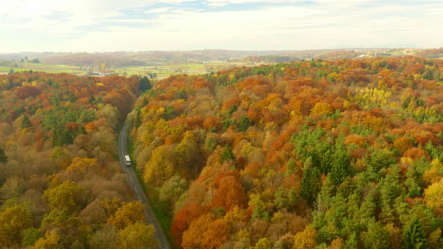 aerial bus driving through mixed forest in autumn - autumn stock videos & royalty-free footage