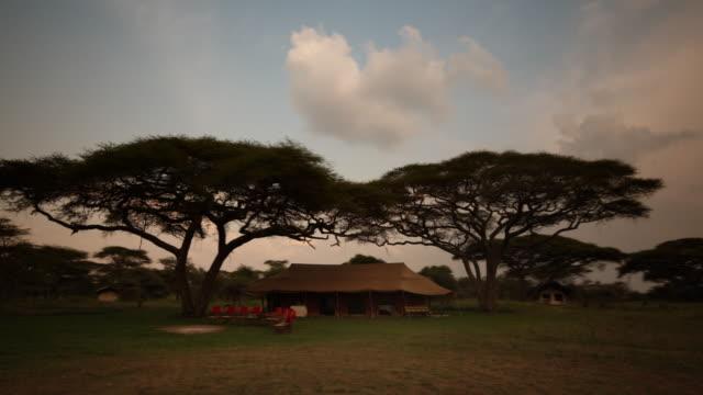 vídeos de stock e filmes b-roll de bush camp prepared for the evening - savana