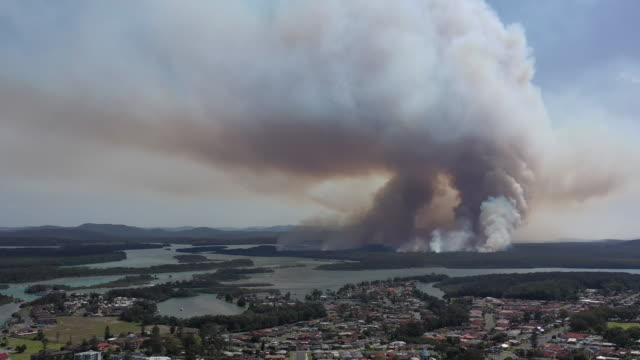 bush fire - fire natural phenomenon stock videos & royalty-free footage