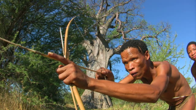 bush people hunting - bow and arrow stock videos and b-roll footage