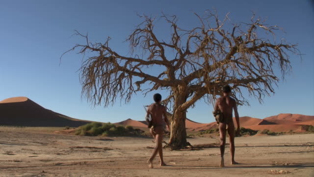 bush people walking in namib sossus vlei - namibia stock videos & royalty-free footage