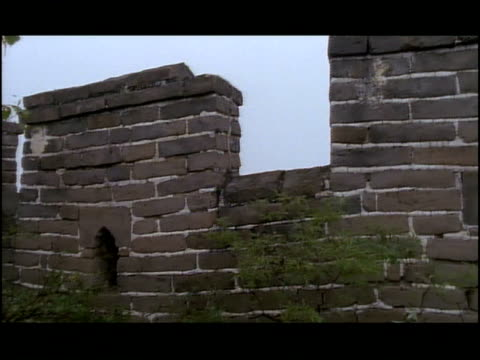 bushes grow on the great wall of china. - great wall of china stock videos & royalty-free footage