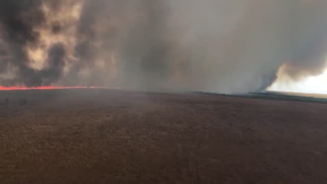 bushfire in australia's northern territory, which began on august 27, burned through around 50,000 acres of land, according to the manager of a local... - australia stock videos & royalty-free footage