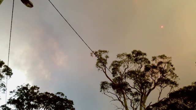bushfires can been seen in the distance on the outskirts of the town of bargo on december 21 2019 in sydney australia a catastrophic fire danger... - burnt stock videos & royalty-free footage