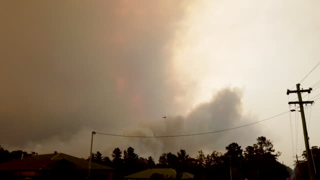 bushfires can been seen in the distance on the outskirts of the town of bargo on december 21 2019 in sydney australia a catastrophic fire danger... - bush stock videos & royalty-free footage