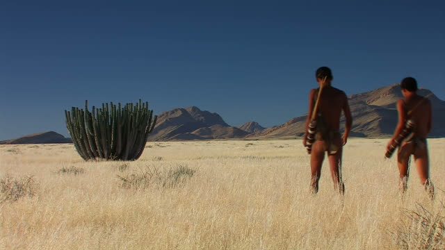 bushmen and a huge cactus