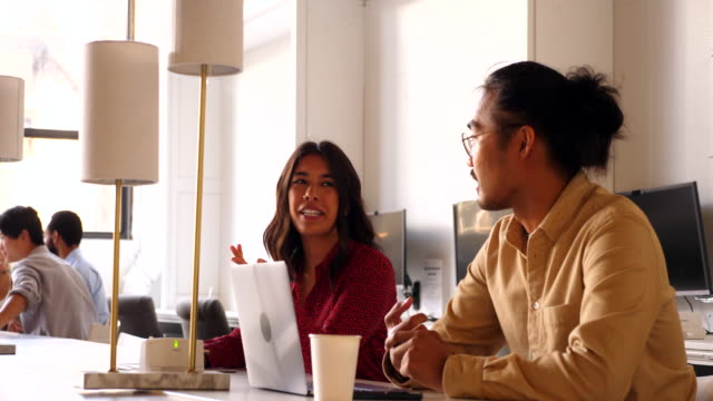 ms business colleagues laughing while working together in coworking office - pacific islanders stock videos & royalty-free footage
