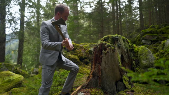 business man in a grey suit chopping a branch with a hatchet in a green forest - offbeat stock videos & royalty-free footage