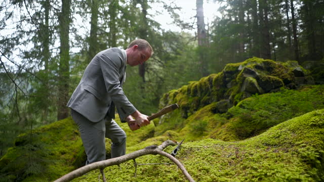business man in a grey suit chopping a branch with a hatchet in a green forest - only mid adult men stock videos & royalty-free footage