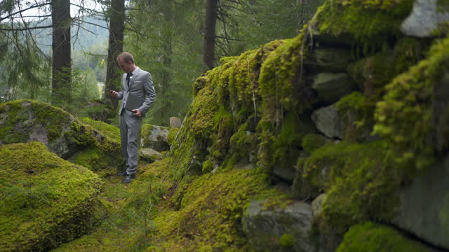 business man in a grey suit using a cell phone expressing shock in a mossy path in a green forest - only mid adult men stock videos & royalty-free footage