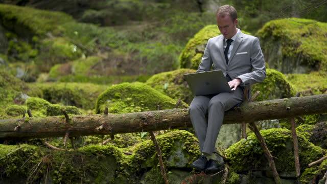 geschäftsmann im grauen anzug mit einem laptop auf einem umstürzten baum in einem grünen wald sitzend - moos stock-videos und b-roll-filmmaterial