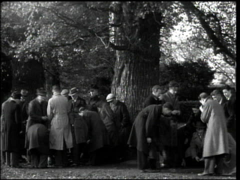 vídeos de stock e filmes b-roll de business men gathered in small groups near tree playing card game ms men in suits crouched down in group td ms seven hands of two cards each laying... - 1944