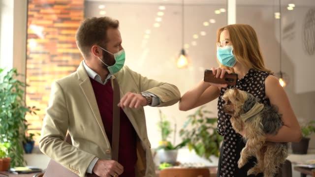 vídeos de stock e filmes b-roll de business people bump elbows in office for greeting during covid-19 pandemic - animal de estimação