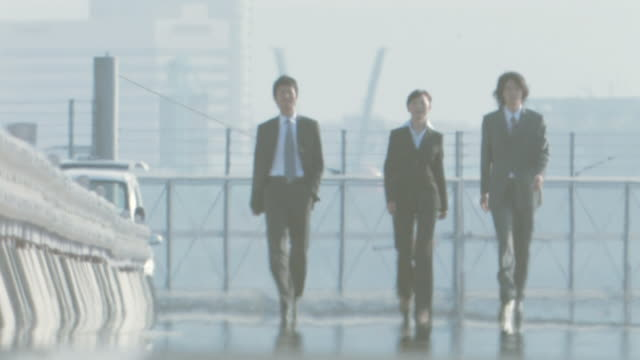 Business people walking side by side