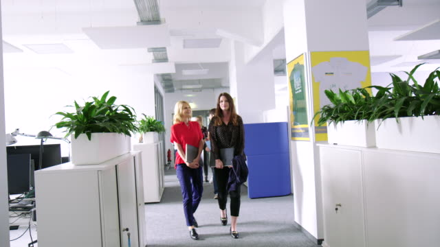 business professionals walking and talking in office corridor - coffee break stock videos & royalty-free footage