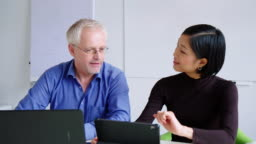 Business professionals working together in office