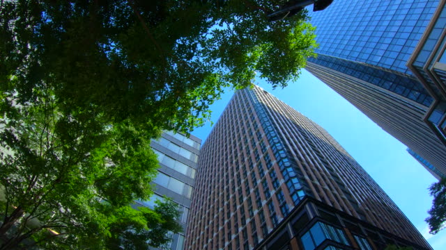 business towers and green leaves - office block exterior stock videos & royalty-free footage