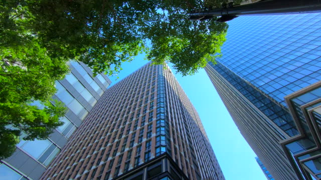 business towers and green leaves - skyscraper stock videos & royalty-free footage
