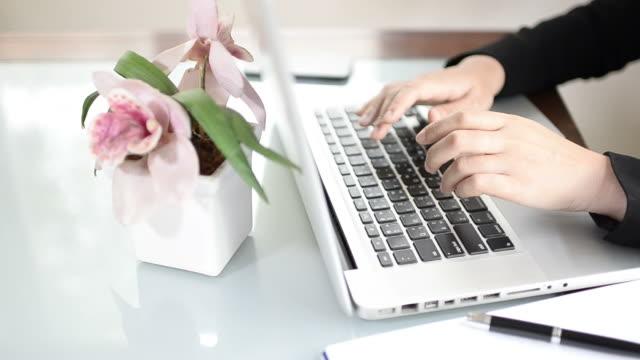 business frau tippen laptop - sekretärberuf stock-videos und b-roll-filmmaterial