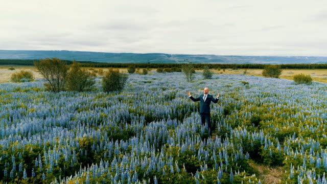 businessman admiring meadow full of flowers - open field stock videos & royalty-free footage