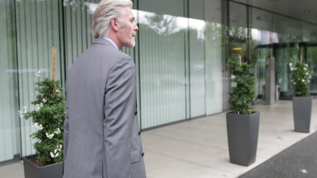 Businessman arriving at hotel