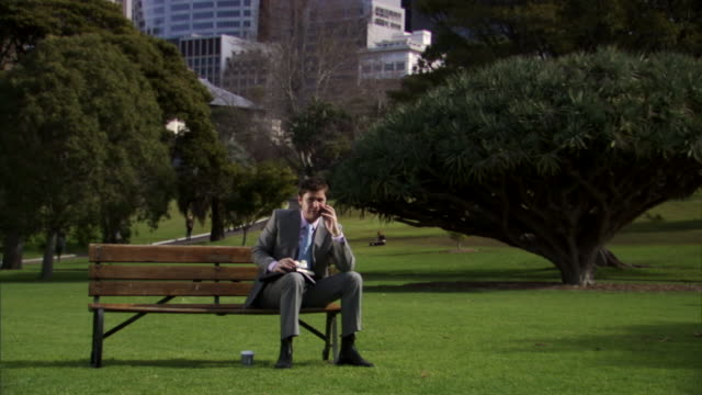 ms, businessman eating lunch and talking on mobile phone in park, sydney, australia - ベンチ点の映像素材/bロール