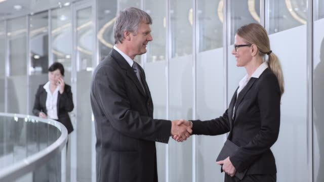 DS Businessman meeting a business woman in the corporate hallway
