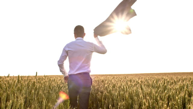 slo mo businessman walking through field of wheat - shoulder stock videos and b-roll footage