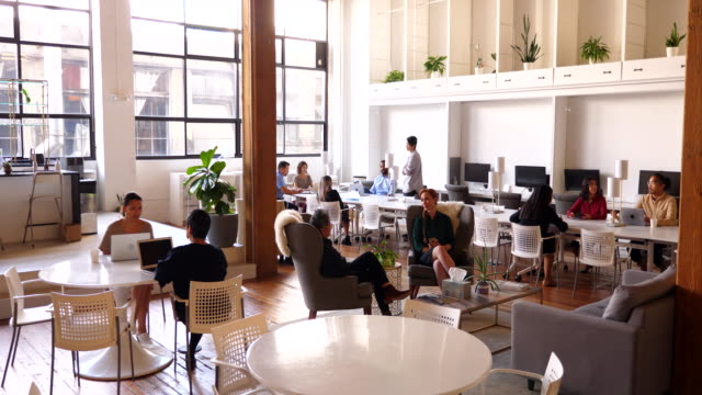 ws businesspeople working in coworking office - coworking stock videos & royalty-free footage