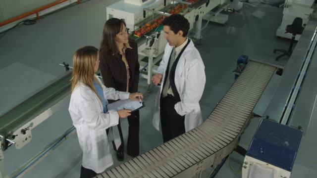ws cs businesswoman and male and female technicians conferring in food processing plant / algarrobo, malaga, spain - male with group of females stock videos & royalty-free footage