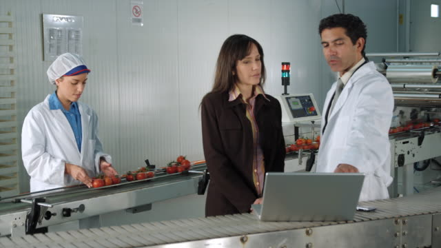 ms ds businesswoman and male technician looking at laptop in food processing plant / algarrobo, malaga, spain - male with group of females stock videos & royalty-free footage